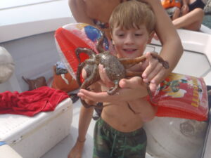 Releasing the octopus carefully back into its habitat